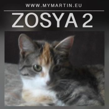 Zosya2