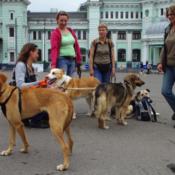 Van thuisloos naar thuiskomst…kunst- en vliegwerk in Rusland