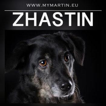 Zhastin