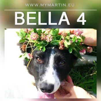 Bella 4