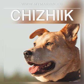 Chizhiik