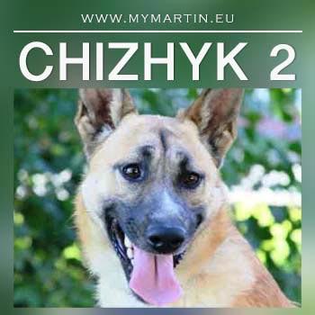 Chizhyk 2