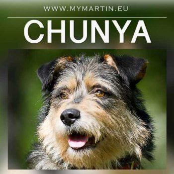 Chunya