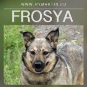 Frosya