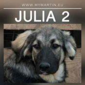 Julia 2