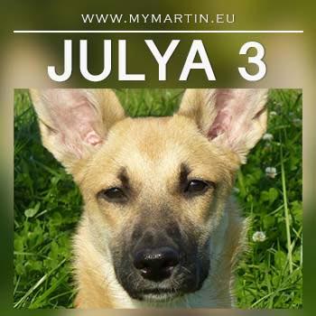 Julya 3
