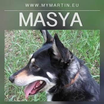 Masya