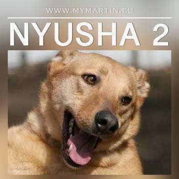 Nyusha 2
