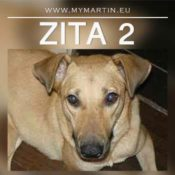 Zita 2