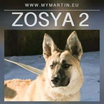 Zosya 2