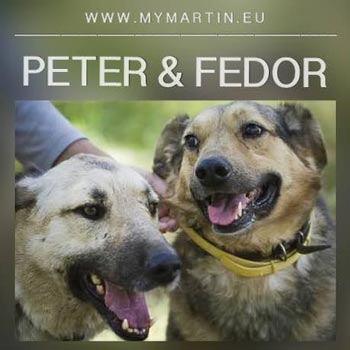 Peter & Fedor