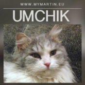 Umchik