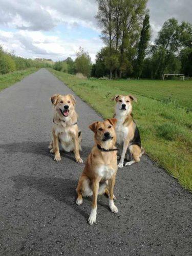 Richie, Abbey en Margot