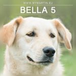 Bella 5
