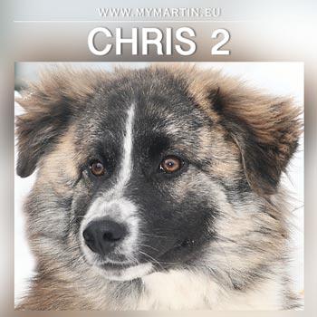 Chris 2