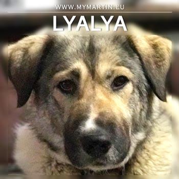 Lyalya