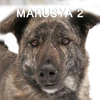Marusya 2