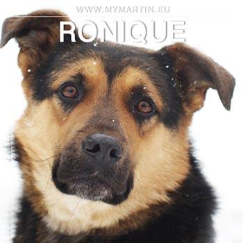 Ronique