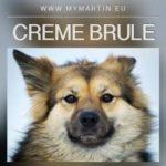 Creme Brule