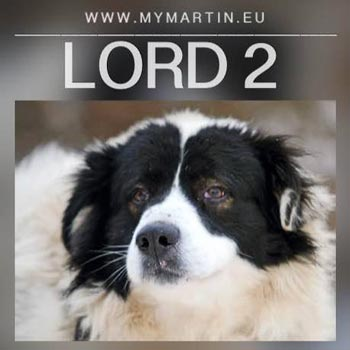 Lord 2