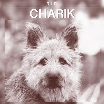 Charik