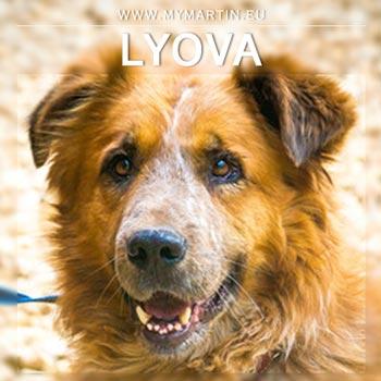 Lyova