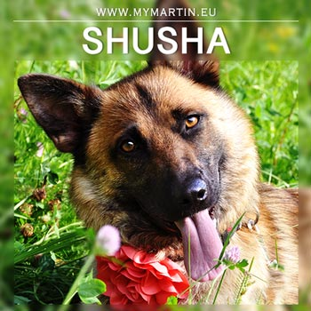 Shusha