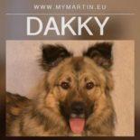 Dakky