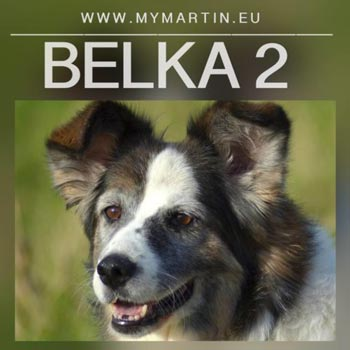Belka 2