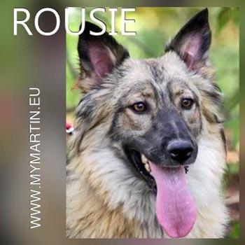 Rousie