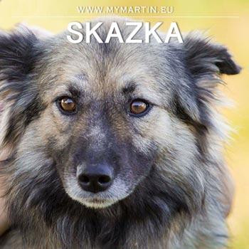 Skazka