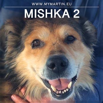 Mishka 2
