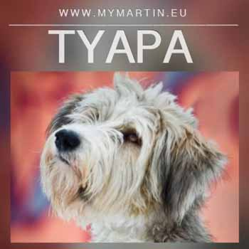 Tyapa
