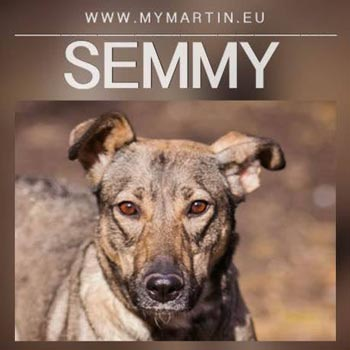 Semmy