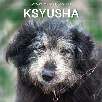 Ksyusha