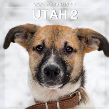Utah 2