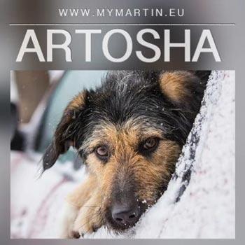 Artosha