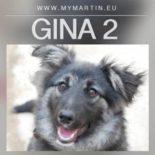 Gina 2