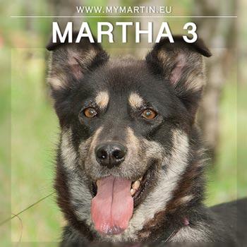Martha 3