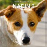 Nadin 2