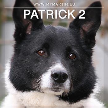 Patrick 2