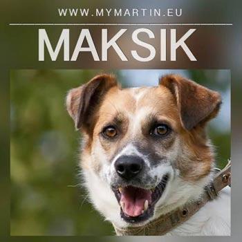 Maksik