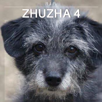 Zhuzha 4